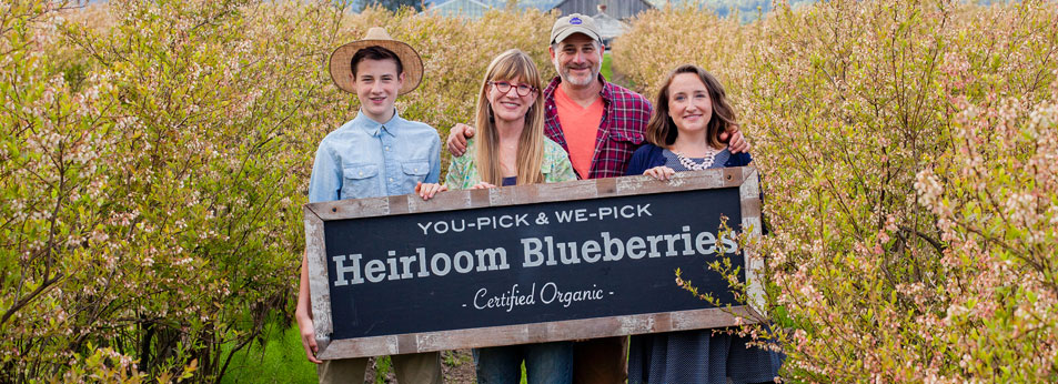Heirloom Blueberries
